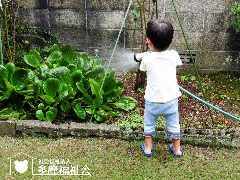 ☆上北沢こぐま保育園☆6月のおたより更新